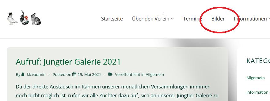 Los gehts!  Jungtiergalerie 2021